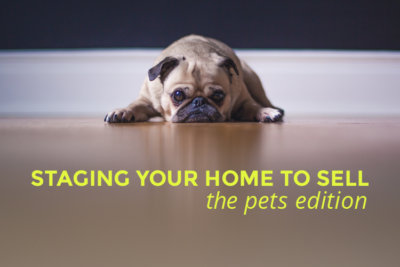 staging home to sell -pets edition