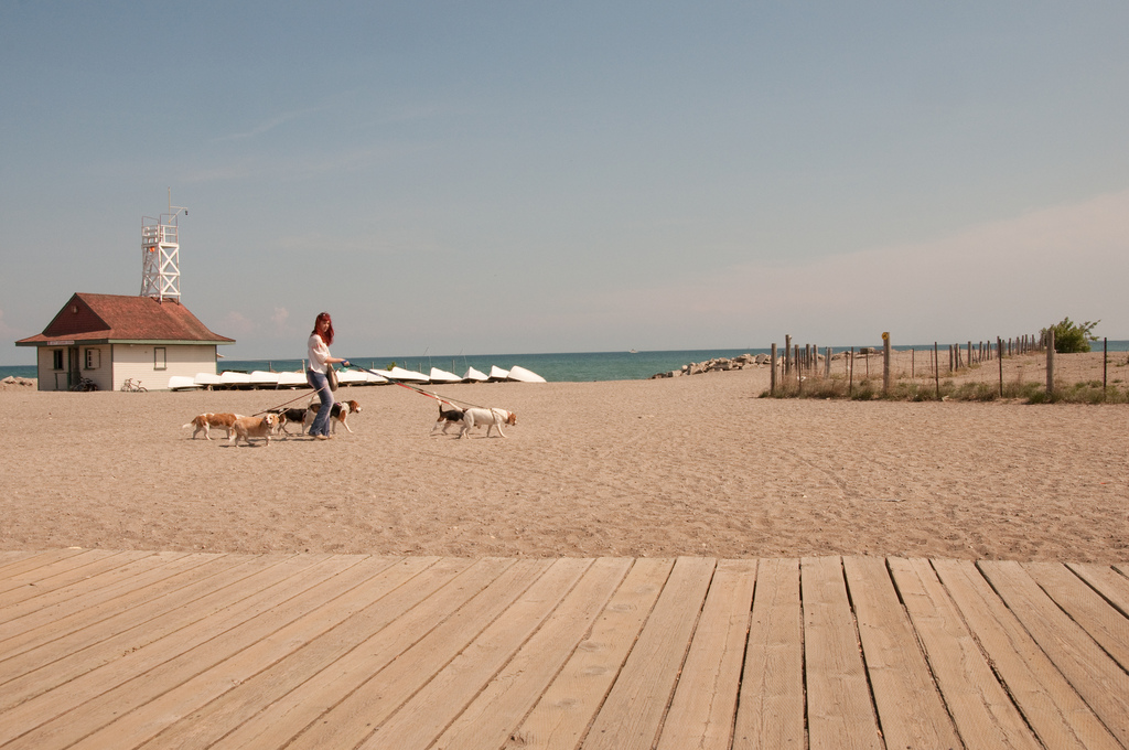 the beach in toronto boardwalk - houses for sale in the beaches toronto