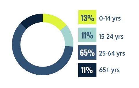 13% 0-14 years, 11% 15-24 years, 65% 25-64 years, 11% 65+ ye