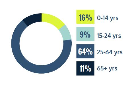 16% 0-14 years, 9% 15-24 years, 64% 25-64 years, 11% 65+ years