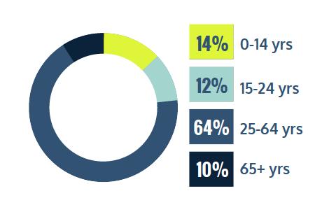 14% 0-14 years, 12% 15-24 years, 64% 25-64 years, 10% 65+ years