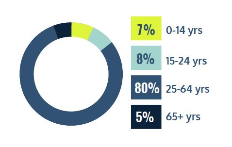 7% 0-14 years, 8% 15-24 years, 80% 25-64 years, 5% 65+ years
