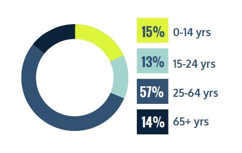 circular chart 15% 0-14 years, 13% 15-24 years, 57% 25-64 years, 14% 65+ years