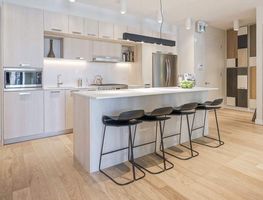 george condos leslieville modern kitchen