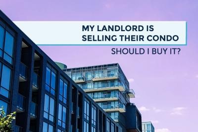 landlord selling condo should i buy it