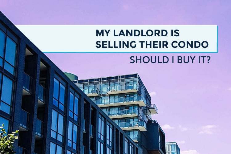 landlord selling condo should i buy it