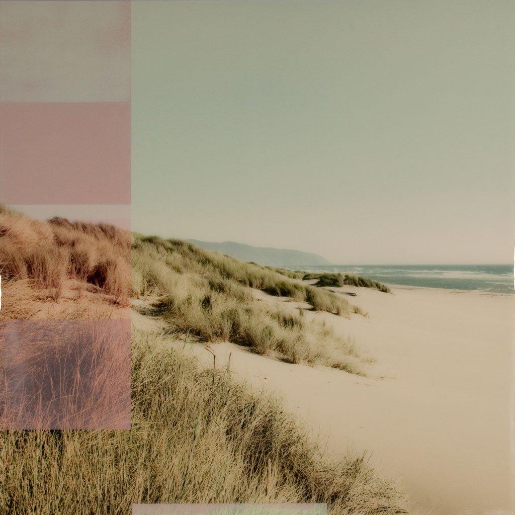 Dunes Christine Flynn
