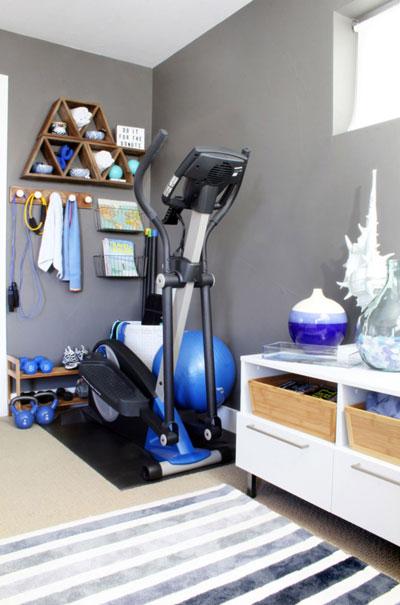 Condo Den Design Ideas Home Gym