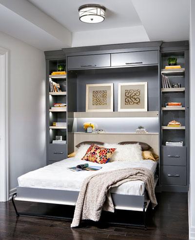 Condo Den Design Ideas Murphy Bed