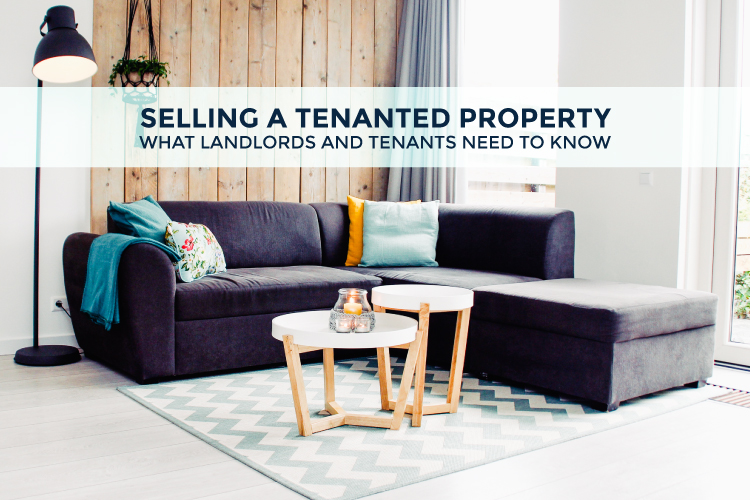 image for Selling a Tenanted Property blog