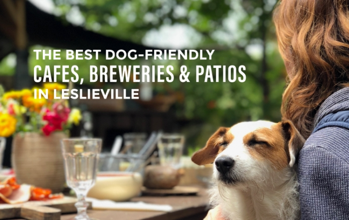 best dog-friendly cafes in leslieville blog cover