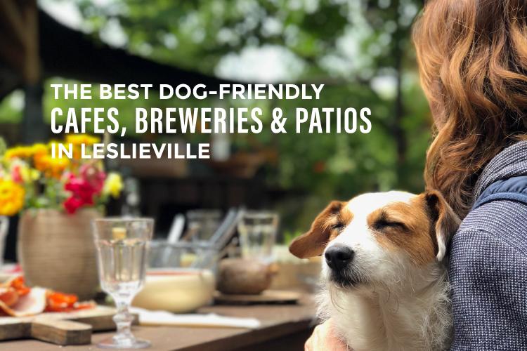 best dog-friendly cafes in leslieville blog cover