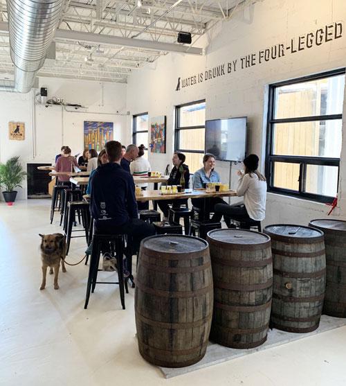 dog-friendly Black Lab Brewery