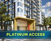 platinum the borough