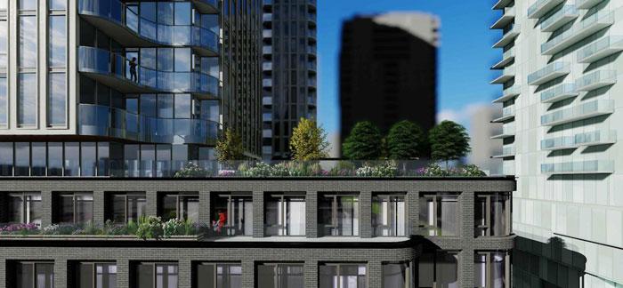 88 Queen Condos Rooftop